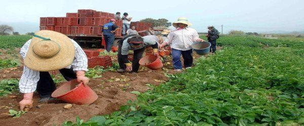 Κατασχέσεις κοινοτικών επιδοτήσεων αγροτών!